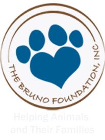 The Bruno Foundation